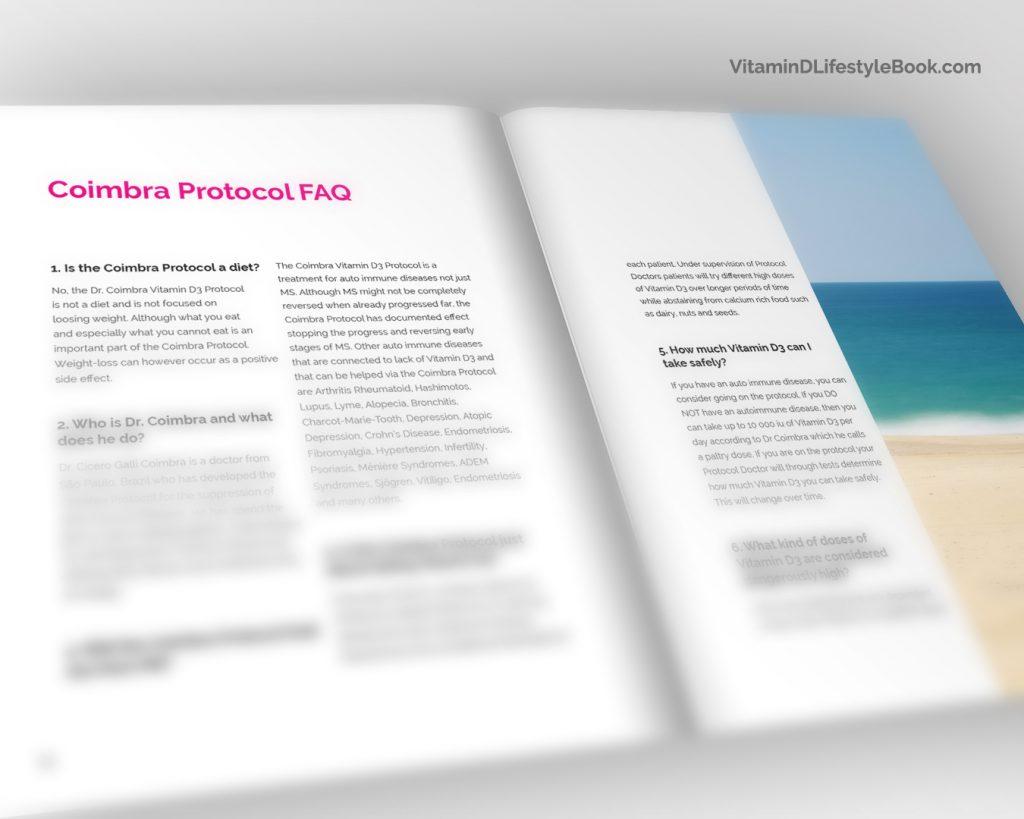 vitamindlifestylebook-inside4